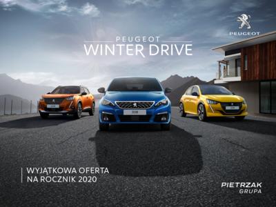 Winter Drive 2020